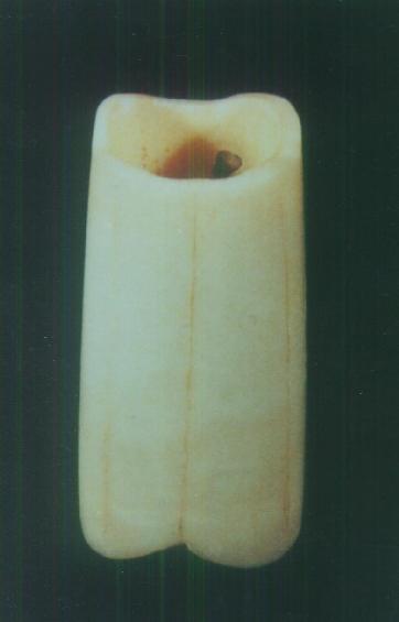 relics of Sakyamuni