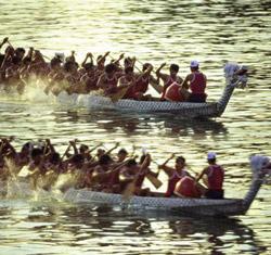 the Dragon Boat Festivel