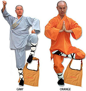 Shaolin Wushu