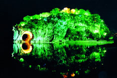 Night View of Elephant Trunk Hill