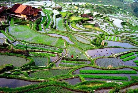 Gaopo Township