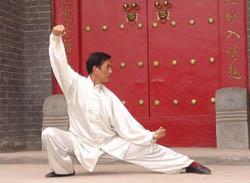 Yang-style Tai Chi