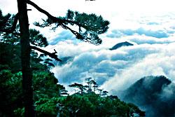 Mt. Lushan