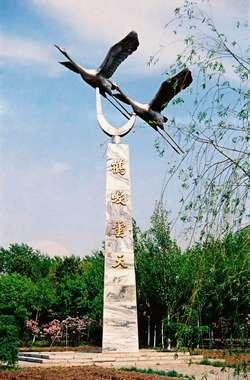 Zhalong Natural Reserve