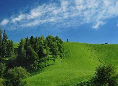 Kongnaiz Grassland