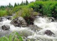 Horqin Nature Reserve