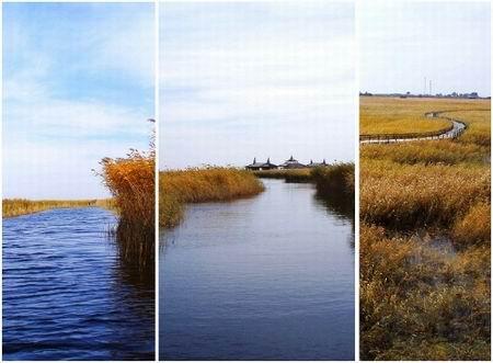 Dangnai Wetland