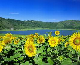 Woniu Lake