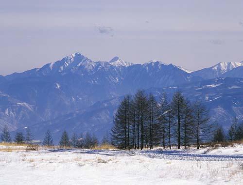 Winter of Luoyang