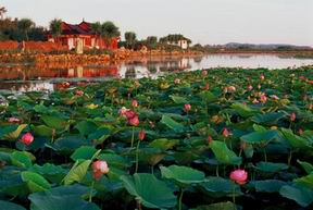 Khanka Lake