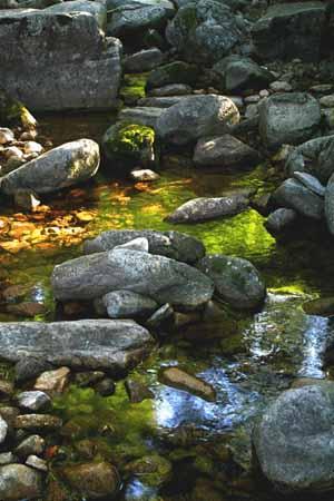 Heaven Pool Mountain Scenic Spot