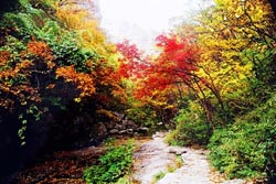 Stone Man Mountain in autumn