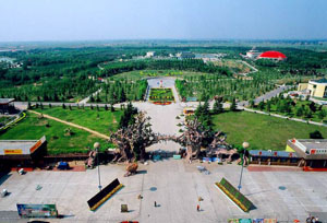 The Zhongyuan Green Park Overview