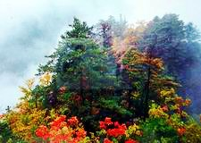 Wunv Peak