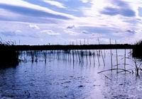 Chagan Lake