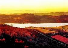 Mountain Gate Tourist Resort