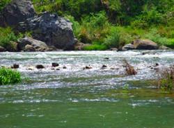 Baima Pond Tianxian River Drift