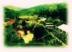 Wild Fragrance Park