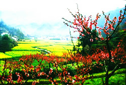 Shangfeng Mountain of Flowers and Fruits