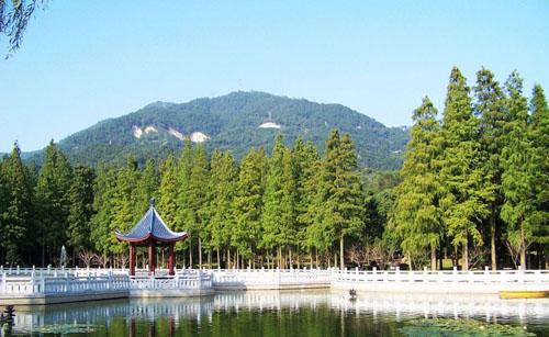 Five Springs Mountain Park