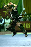 Kunlun Mountain Fist