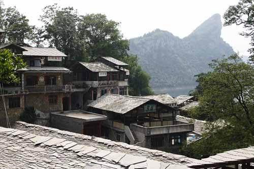 zhenshan1