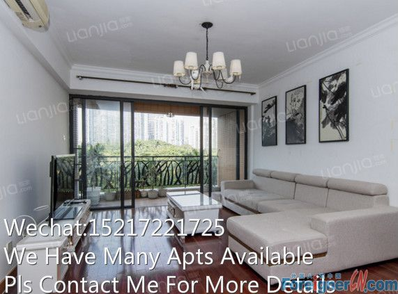 New available and good apt for rent in Central Park View Garden ,zhujiang park view