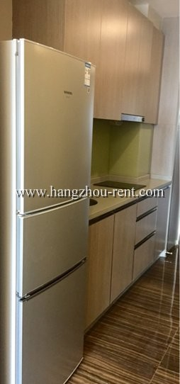 single apartment in binjiang district near metro station of line 1 for rent