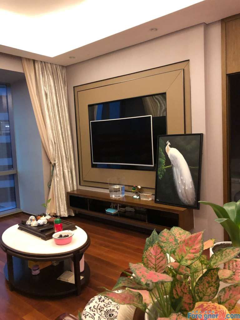 Apartment rental in Suzhou-Times Square-2 baths–nearby shopping mall- lake view -convenient traffic