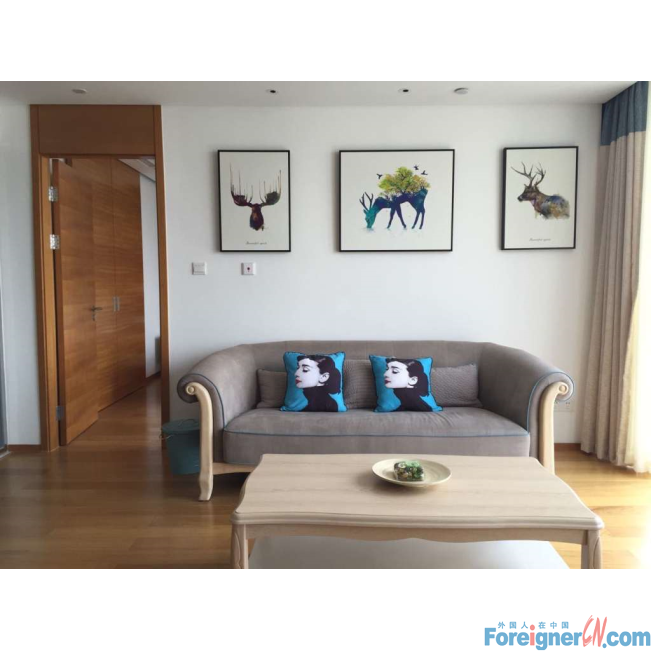 Nearby Subway Line2(Yueliangwan Station)/1 Bedroom&1 Bathroom/With a bathtub/Ikea Style Decoration/Easy Access to Gym,Supermarket,Restaurant,gardens,etc./Bright&Concise&Homely