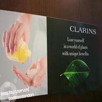 Clarins Skin Spas
