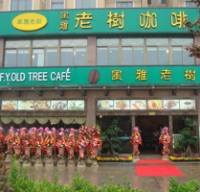 F. Y. Old Tree Cafe