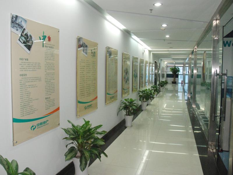 Zhong Lian Real Estate-2