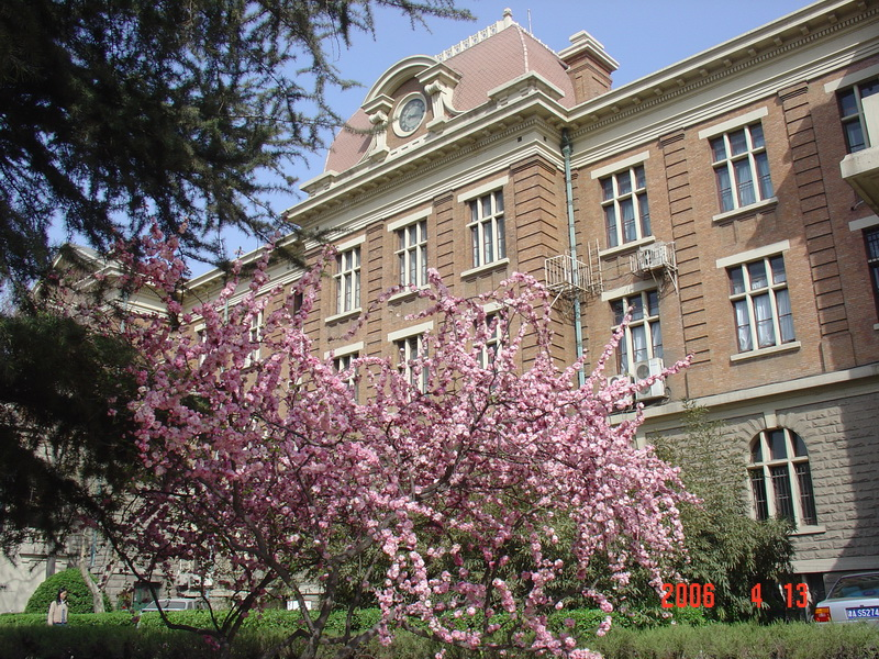 Tianjin Foreign Studies University-3